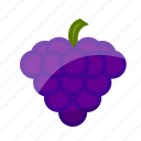 food, fruit, grapes, healthy, slots icon