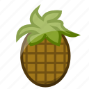 food, fruit, healthy, pineapple, slots icon