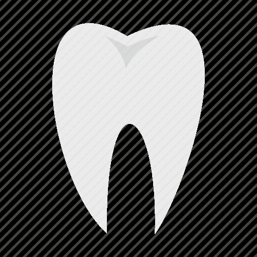 care, clean, dental, dentist, hygiene, medicine, tooth icon