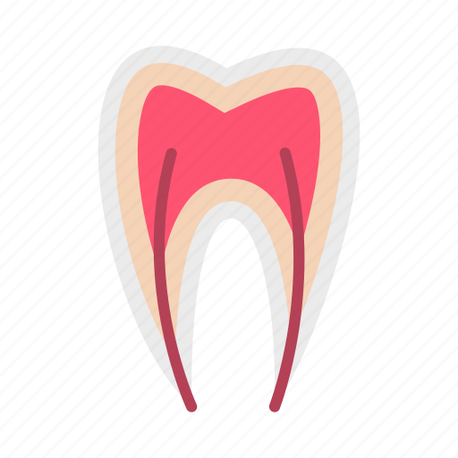 care, clean, dental, dentist, medicine, nerve, tooth icon