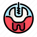 caries, dental, dentist, drill, medical, tooth icon