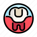 caries, dental, dentist, medical, seal, tooth icon