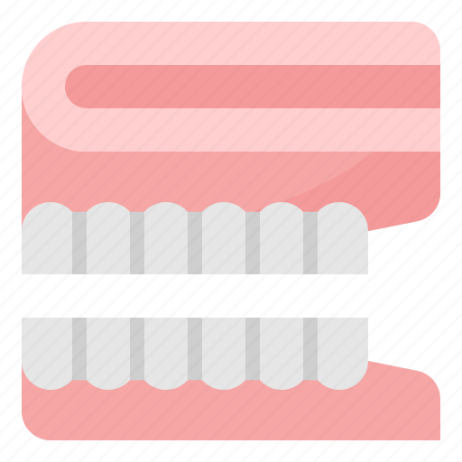 Denture, healthcare, medical, teeth, tooth icon - Download on Iconfinder