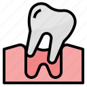 dental, healthcare, loose, medical, tooth icon