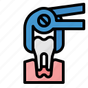 dental, extraction, medical, remove, tooth icon