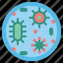 bacteria, disease, virus