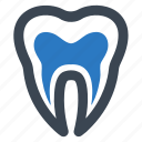 anatomy, canal, root, tooth icon