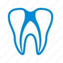 canal, care, dental, filling, root, teeth, tooth