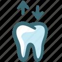 dental, doodle, removable denture, tooth