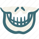 bone, dental, doodle, skeleton, skull icon