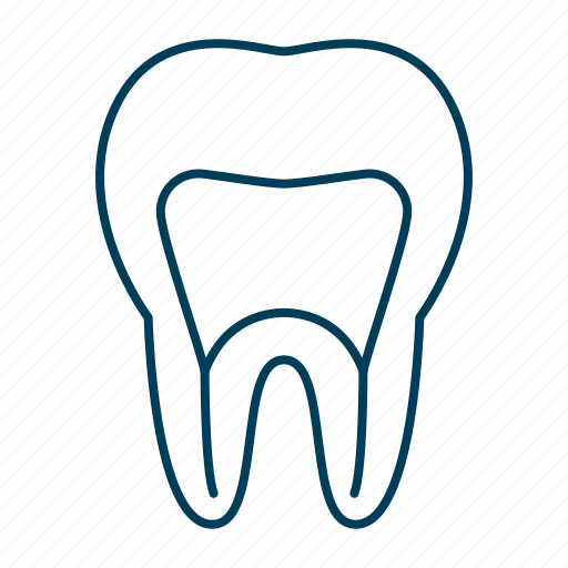 dental, dentist, healthcare, root, roots, tooth icon