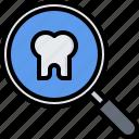 dental, dentist, magnifier, medicine, search, tooth