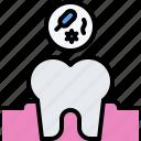 dentist, medicine, tooth, bacterium, dental