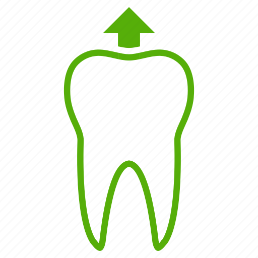dental, dentist, dentistry, growth, medical, tooth icon