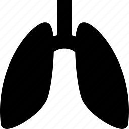 anatomy, body, fluorography, human, lungs, medical, organ icon
