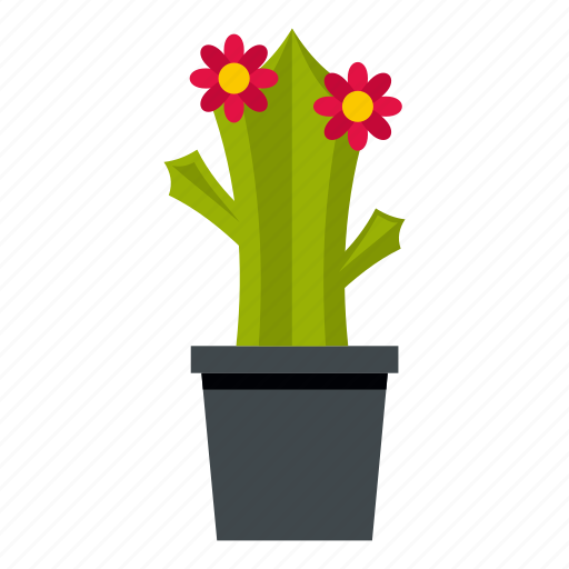 bloom, blooming, blossom, cactus, flower, plant, succulent icon