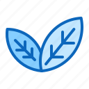 eco, green, leaf, natural icon