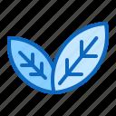 eco, green, leaf, natural