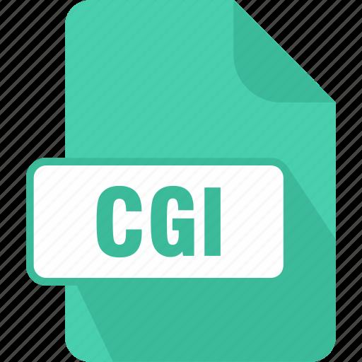 cgi, common gateway interface script, document, extension, file, type icon