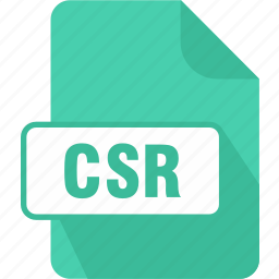 certificate signing request file, csr, extension, file, type icon
