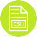 csh, document, document list, extension, file, format, page icon
