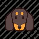 animal, breed, dachshund, dog, pedigree, pet, purebred icon
