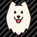 animal, breed, dog, pedigree, pet, purebred, samoyed icon