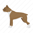 boxer, breed, dog, mammal, pet, pug icon