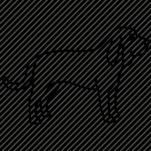 blood, bloodhound, dog, hound, sniffer, tracking icon