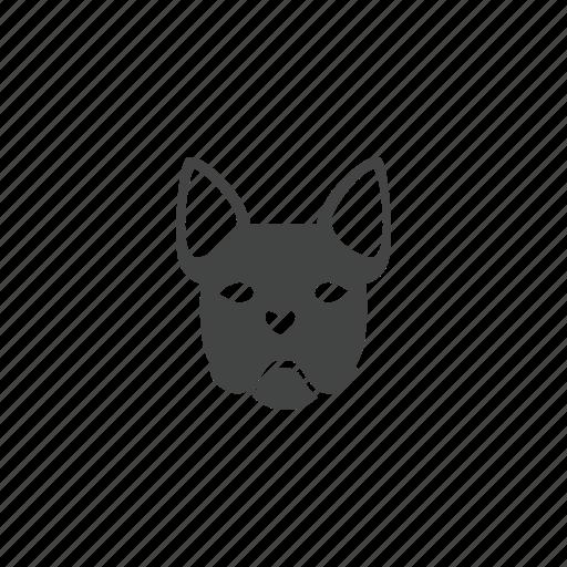 animal, dog, mammal, pet icon