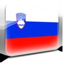flag, slovenia