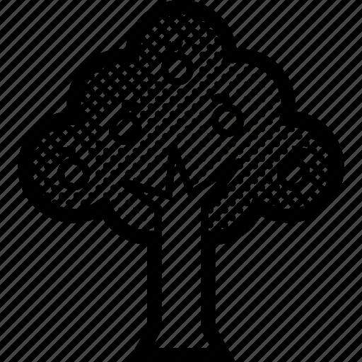 fruits, nature, plants, tree, wood icon