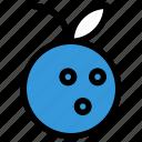 fruit, juice, lime, orange icon