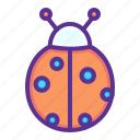 easter, insect, ladybug, luck, spring icon