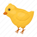 attribute, chick, chicken, easter, holiday, religious icon