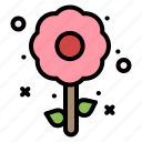 easter, flower, holiday, plent icon