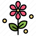 easter, flower, nature icon