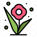 flower, plant, rose, spring icon