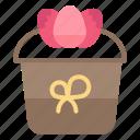 decoration, easter, flower, gift, plant