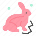 bunny, easter, nature, robbit