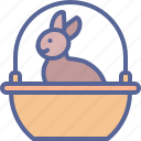 basket, bunny, chocolate, rabbit