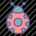 bug, ladybug, luck, spring icon