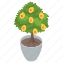 coniferous tree, decorated tree, easter egg tree, easter tree, evergreen tree