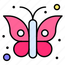 animal, butterfly, insect, serenity, papillon