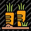 carrot, diet, food, healthy, vegan, vegetable