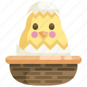 animals, bucket, chick, chicken, easter, egg, season icon