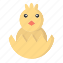 animal, chick, cute, easter, easter day, egg icon
