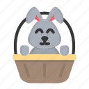 animal, basket, bunny, cute, easter, easter day, rabbit icon