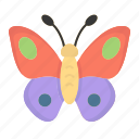 animal, bug, butterfly, easter, easter day, insect, spring