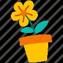 flower, floral, spring, flora